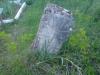 2010.05.01--819140.jpg